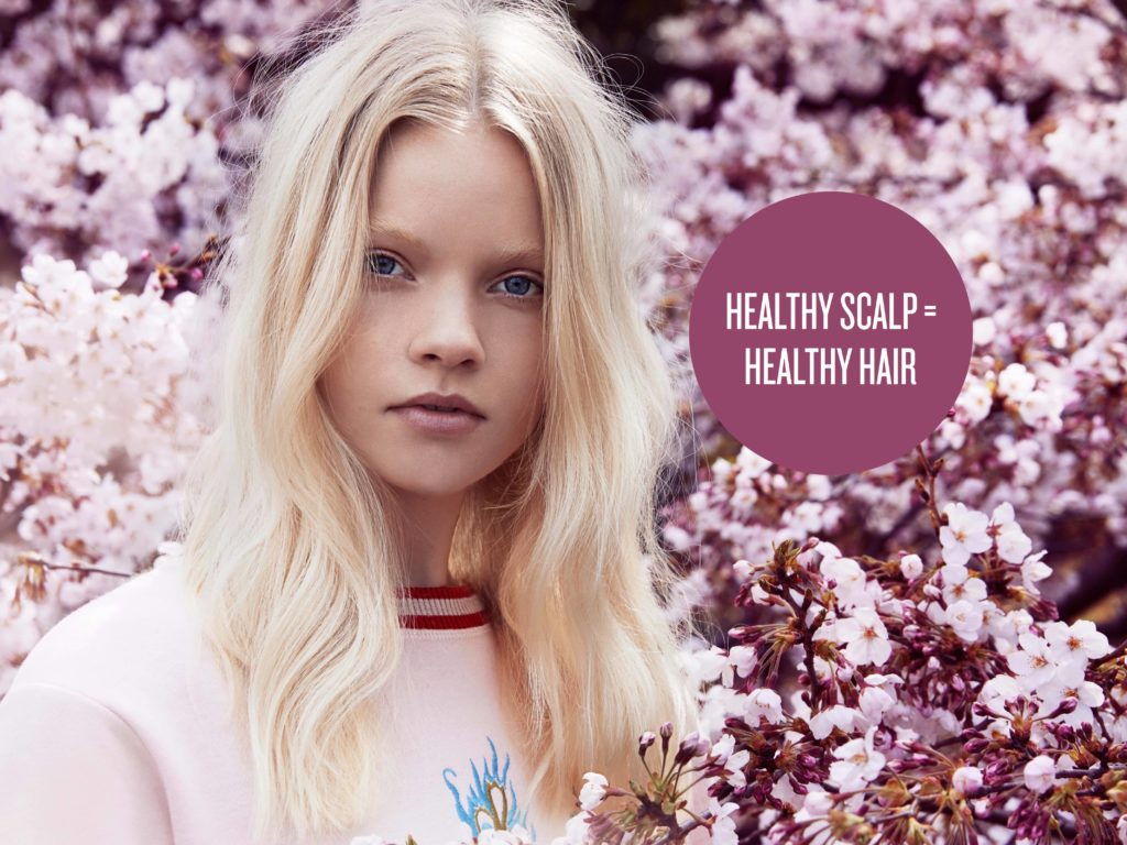 Top tips for scalp care and healthy hair